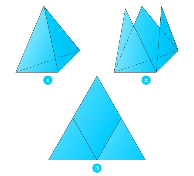 Jaring Jaring Limas Pendidikan Matematika